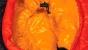 Спальный мешок RedPoint Lightsome 233 - фото 3