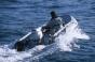 Надувная лодка Honda HonWave T40 AE2 - фото 3