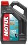 Масло моторное Motul Outboard Tech 2T TC-W3 5 литров - фото 1