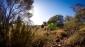 Палатка NEMO Galaxi 3P Birch Leaf Green + Защитная подстилка - фото 19