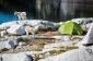 Ультралегкая палатка NEMO Dagger 2P - фото 15
