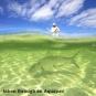 Гермочехол Aquapac для камеры с Zoom - объективом - фото 2